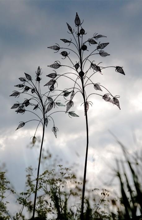 steel grass (1)